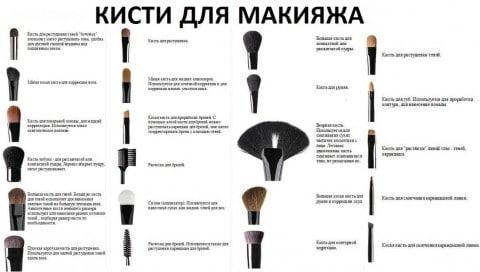 Базовые кисти для макияжа