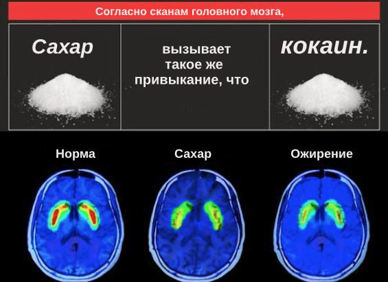 Сахар = наркотик - влияние на мозг этих веществ