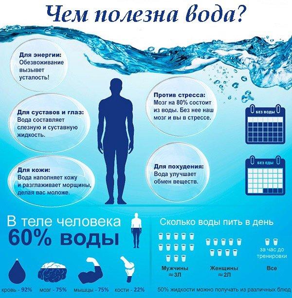 Почему вода так полезна