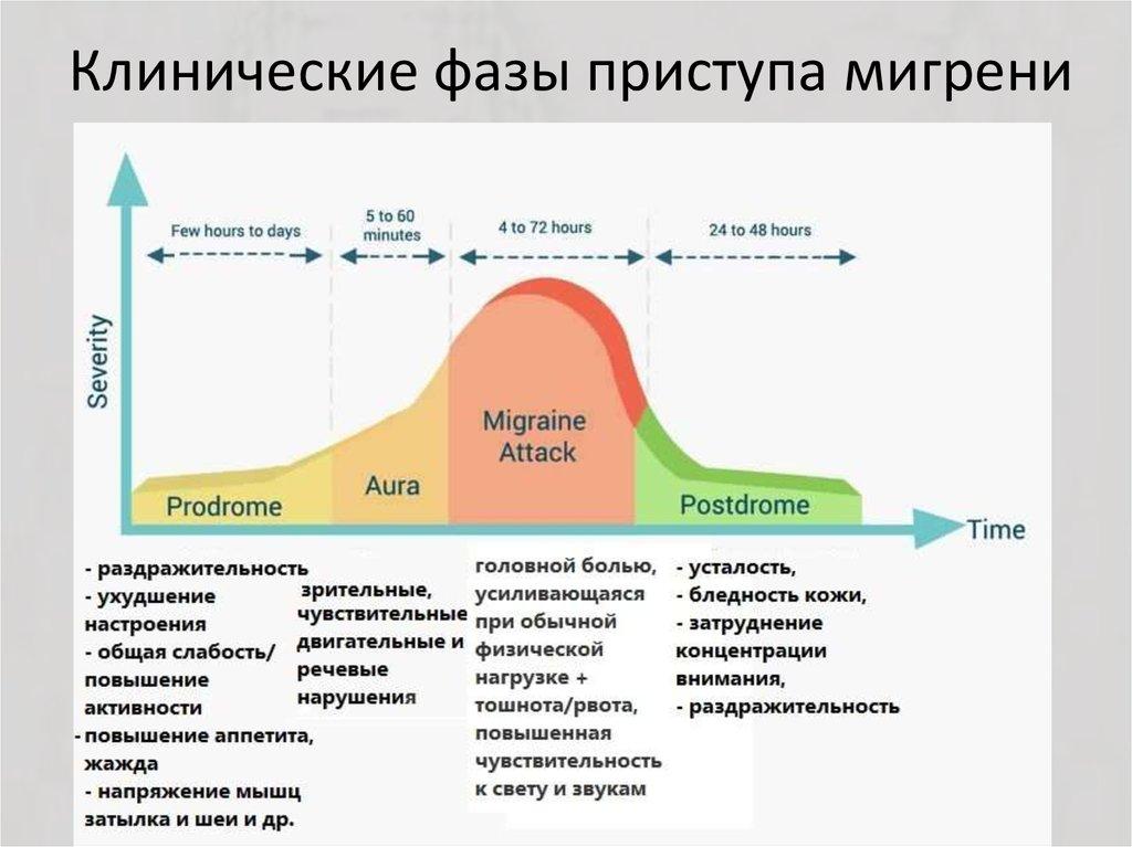 4 фазы мигрени